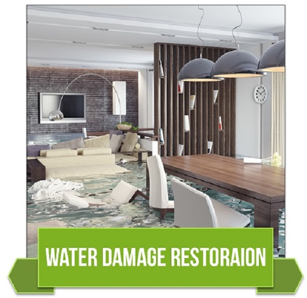 Water Flood Cleanup Service Tampa, FL 33601