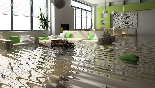 Anytime Water Damage Services Tampa, FL 33601